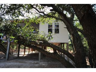 OBX - NC - Secluded Cottage - 4WD Area